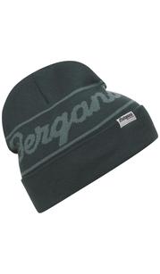Шапка Bergans Logo Beanie, зеленый Bergans — фото 1
